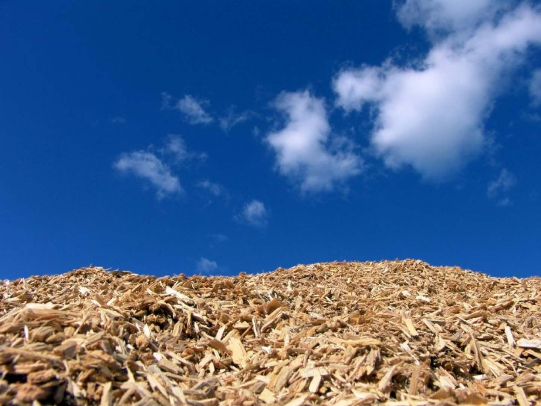 stiepka, biomass, bro, biomasa, biologicky rozlozitelny odpad
